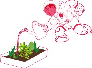 PR42 Astrofarmer – Learning about conditions for plant growth